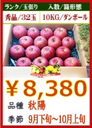美味しいりんご 秋陽10KG