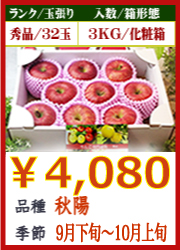 美味しいりんご 秋陽3KG 化粧箱入