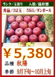美味しいりんご 秋陽5KG