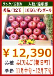 美味しいりんご ふじ(朝日町)10KG