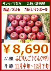 美味しいりんご ふじ(天狗印) 5KG