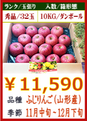 美味しいりんご ふじ(山形産)10KG