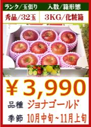美味しいりんご ジョナゴールド 3KG 化粧箱入