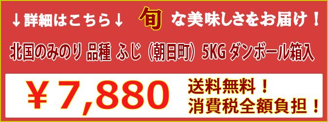 ふじ(朝日町)5KG