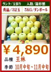 美味しいりんご 王林 5KG
