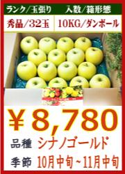 美味しいりんご シナノゴールド 10KG
