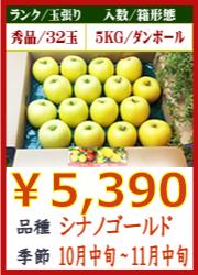 美味しいりんご シナノゴールド 5KG