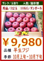 美味しいりんご 早生フジ 10KG