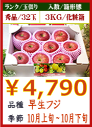 美味しいりんご 早生フジ 3KG 化粧箱入