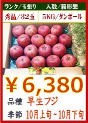 美味しいりんご 早生フジ 5KG