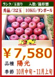美味しいりんご 陽光 10KG