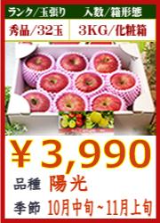 美味しいりんご 陽光 3KG 化粧箱入