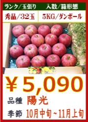 美味しいりんご 陽光 5KG