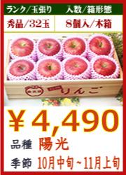 美味しいりんご 陽光8個 木箱入